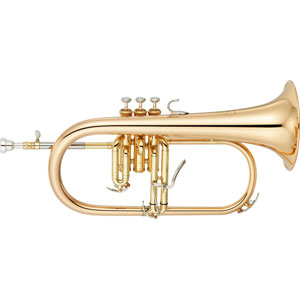 Flugel Horn/Tenor Horn Dempers