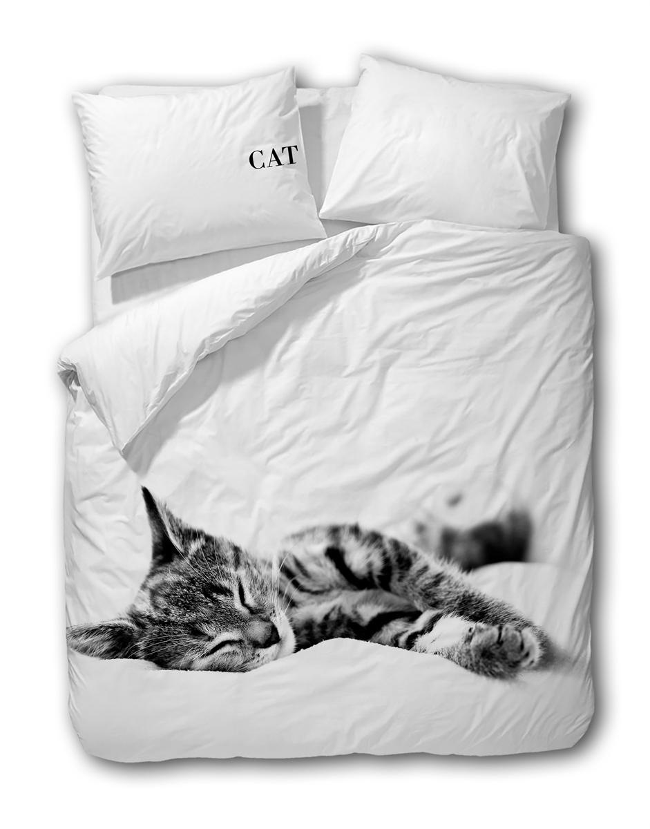 CASILIN - CAT - WIT