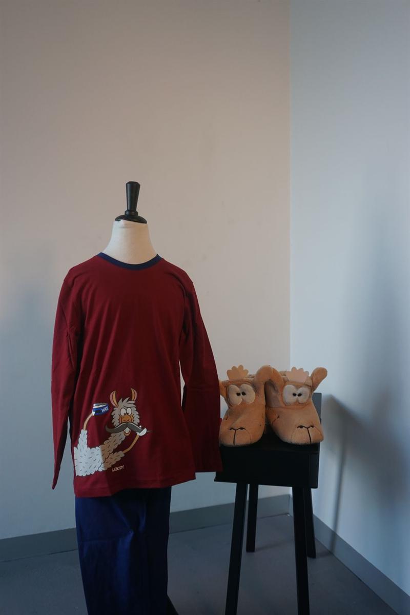 Pyjama jongens - Woody - 192-1-PLU-S/477 - donkerrood