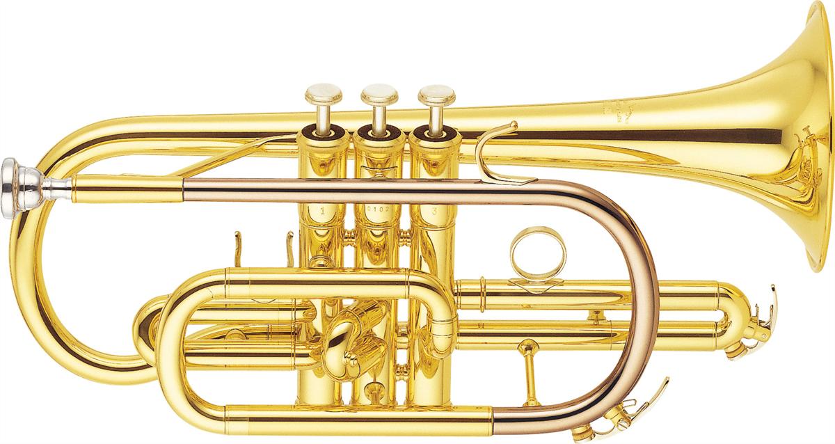 Yamaha Bb Cornet YCR-6330II Professional - Uitvoering: Goudlak