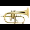 Courtois Flugel Horn PROFESSIONAL - Uitvoering: Goudlak
