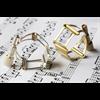 Francois Louis Ligatuur Saxofoon Alto XL Basic Silver