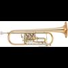 Yamaha Bb Trompet YTR-436G Medium Weight Intermediate - Uitvoering: Goudlak