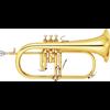Yamaha Flugel Horn YFH-8310Z Custom - Uitvoering: Goudlak