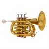 John Packer Pocket Trompet JP159 - Uitvoering: Goudlak