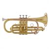 John Packer Bb Cornet JP071 - Uitvoering: Goudlak