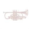 John Packer Bb Cornet JP171SWS - Uitvoering: Verzilverd