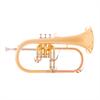 John Packer Flugel Horn JP175 - Uitvoering: Goudlak