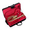 John Packer Tenor Horn JP272 - Uitvoering: Goudlak