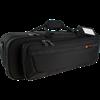 PB301SCL ProTec Standard Koffer Trompet - Zwart
