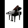 Roland V-PIANO GRAND Digitale Vleugel - Zwart Hoogglans