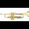 B&S Bb Trompet CHALLENGER I 3137 - Uitvoering: Goudlak